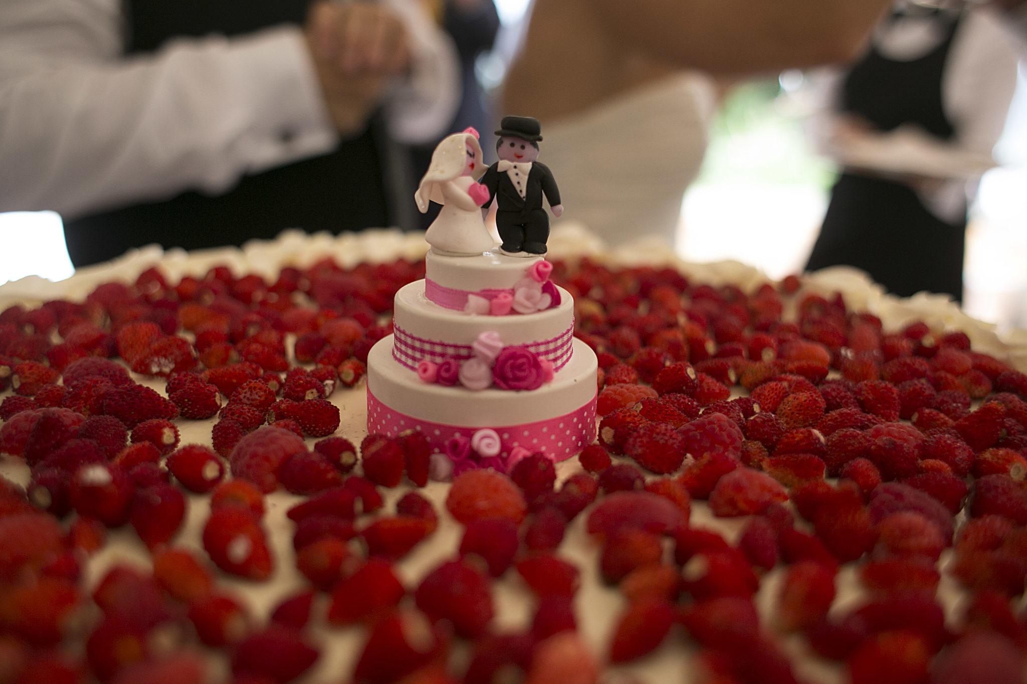 Michela matrimonio cake topper su torta