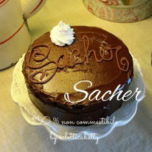 Sacher 15 cm